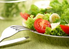 Fresh salad with tomato and quail eggs. In a white bowl on a green tablecloth stock image