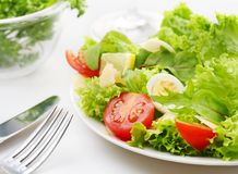 Fresh salad with tomato and quail eggs Stock Photos