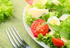 Fresh salad with tomato and quail eggs Royalty Free Stock Image