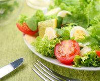 Fresh salad with tomato and quail eggs Royalty Free Stock Photo