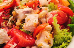 Fresh salad with tomato salad and meat Royalty Free Stock Photo