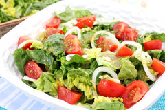 A fresh salad with tomatoes Royalty Free Stock Images