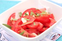 A fresh salad of tomatoes Royalty Free Stock Photo