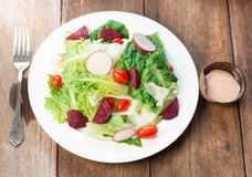 Fresh salad with tomatoes Royalty Free Stock Image
