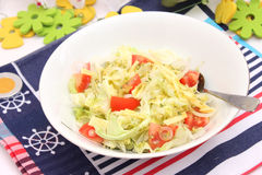 Fresh salad with tomatoes and cheese Royalty Free Stock Photography