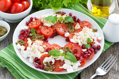 Fresh salad with tomatoes, cottage cheese, mint pesto Royalty Free Stock Photography