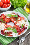 Fresh salad with tomatoes, cottage cheese, mint pesto Royalty Free Stock Photos