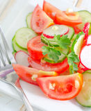 Fresh salad. Of tomatoes, cucumbers, radishes and parsley Royalty Free Stock Image