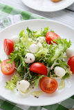 Fresh salad with tomatoes on white plate. Close-up Royalty Free Stock Image