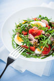 Fresh salad with tuna, tomatoes, eggs, arugula and mustard on blue wooden background close up Royalty Free Stock Photo