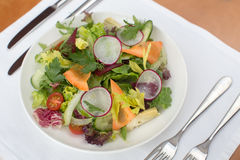 Fresh salad with Stock Photography
