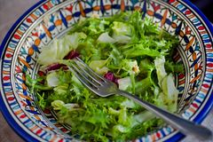 Fresh salad. Vegetable salad in colorful plate. Spring greens and leaves with olive oil stock photos