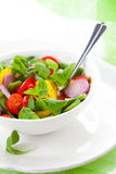 Fresh salad with vegetables Royalty Free Stock Image