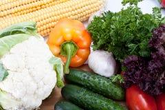 Fresh salad vegetables Stock Image