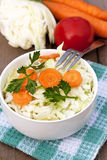 fresh salad with vegetables Stock Images