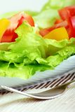 Fresh salad and water Stock Image