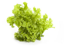 Fresh salad on a white background Royalty Free Stock Photos