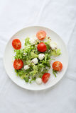 Fresh salad on white plate. Above Royalty Free Stock Photos