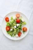 Fresh salad on white plate royalty free stock photos