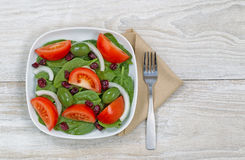 Fresh Salad on white plate with fork and napkin Stock Image