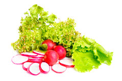 Fresh salad , whole and  sliced radish Stock Photo