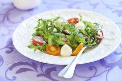 Free Fresh Salad With Cherry Tomatoes And Mozzarella Stock Photography - 42654482