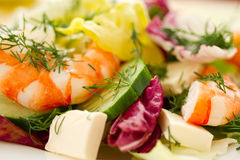 Free Fresh Salad With Shrimp Stock Image - 29640511