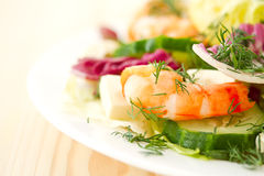Free Fresh Salad With Shrimp Stock Image - 29640521