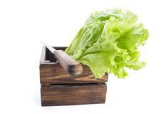 Fresh salad in wooden box with knife on white background Royalty Free Stock Photos