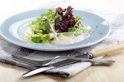 Fresh salad with yogurt dressing Royalty Free Stock Photo