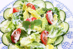 Fresh salad with yogurt Royalty Free Stock Photography