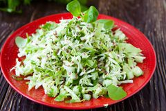 Fresh salad of young cabbage Stock Photos