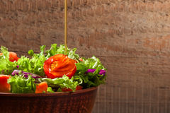 Fresh salade on wooden background Stock Photos