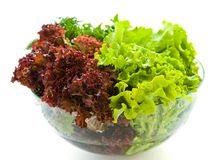 Fresh salads. Some bunches of fresh salads in a glass bowl on a white background stock photos