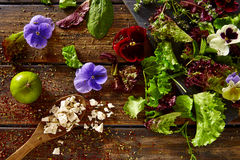 Fresh saland ingredients lettuce flowers spinach Stock Images