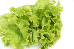 Fresh salat #2 Stock Images