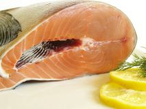 Fresh salmon. With lemon decoration stock image