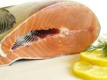 Fresh salmon. With lemon decoration Stock Image