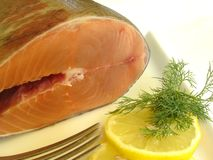 Fresh salmon. With lemon decoration stock images