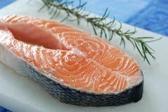 Fresh salmon. Slice of raw salmon and fresh Royalty Free Stock Photography