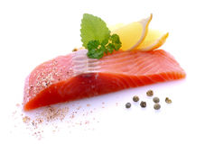 Fresh salmon. On white ground Royalty Free Stock Image