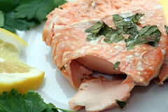 Fresh salmon. Plate of fresh salmon garnished with parsley and lemon stock image