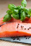 Fresh salmon with basil and pepper Stock Photography