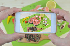 Fresh Salmon on Cell Phone Stock Image