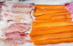 Fresh salmon and cod filet Stock Photos