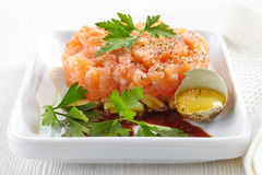 Fresh salmon and cucumber tartare royalty free stock images