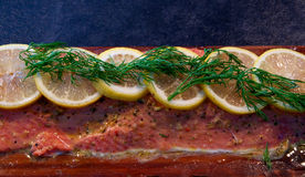 Fresh salmon filet on cedar plank Royalty Free Stock Images