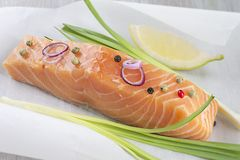Fresh salmon filet. With vegetable ready to cook on parchment Stock Images