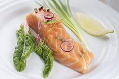 Fresh salmon filet Stock Photography