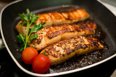 Fresh salmon filles  grilled in a pan Stock Photos